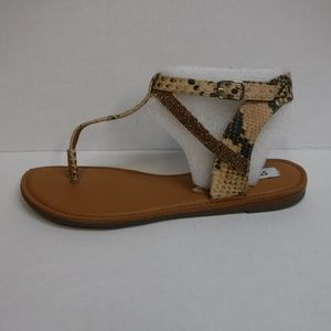 Steve Madden Size 8 Brown Sandals New Womens Shoes